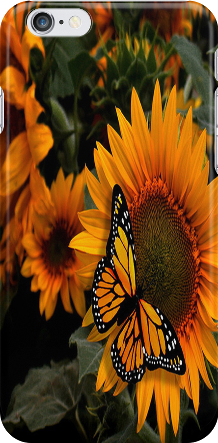 Sunflower Radiance Monarch Butterfly by purplesensation