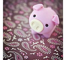 Cute Pig on Decorative Paper   Photographic Print