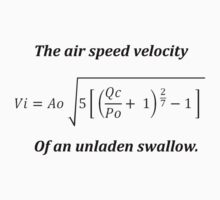 Air speed velocity of an unladen swallow. by bigredbubbles6