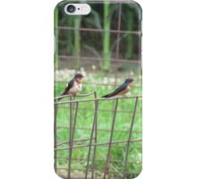 Birds on Fence iPhone Case/Skin
