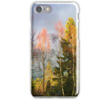 Autumn Cathedral, iPhone case iPhone Case/Skin