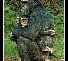 A Mothers Love by MaverickDesign