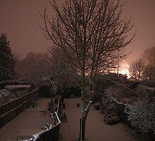 Fresh Snow by Jack  Castle