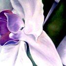 flower01 by YourHum