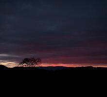 October Mountain Dawn by Joe Jennelle