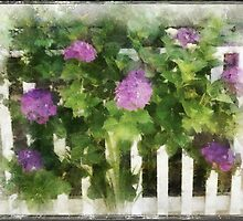 White Picket Fence by Catherine Restivo