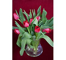 Vase of Tulips Photographic Print