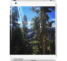 Mary Jane Falls  iPad Case/Skin