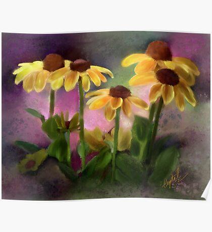 Black-eyed Susan Flower Blossoms Poster