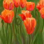 Vibrant Orange Tulips by CrowningGlory