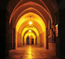 Arch by amira