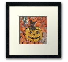 Harvest Cat Framed Print