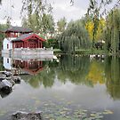 Reflections in Chinese Garden by orko
