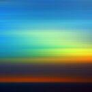 Final Light by Anne  McGinn