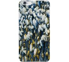 River Bed Rocks iPhone Case/Skin