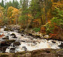 River Brann,Dunkeld,Perthshire,Scotland by M.S. Photography/Art