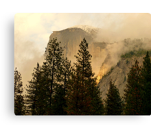 "Gold ""Rush"" in Yosemite National Park Canvas Print"