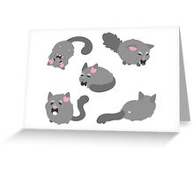 Mr. Bowtie Kitty Greeting Card