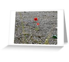 BLOOM WHERE YOURE PLANTED Greeting Card