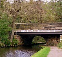 Canal Bridge by shelleybabe2
