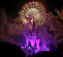 Disney World at Christmas! by logonfire