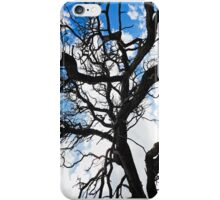 Tree branches and Sky iPhone Case/Skin