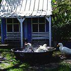 Splish Splash I was Taking A Bath by Gabrielle  Lees