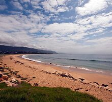 Shoalhaven Beach by Odille Esmonde-Morgan