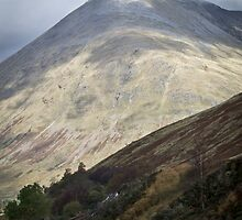 The Scottish Highlands No.11 by Chris Cardwell
