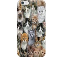 Lot's Of Cats iPhone 4s Case iPhone Case/Skin