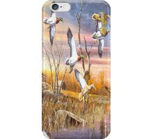 Ducks in Flight iPhone 4s Case iPhone Case/Skin