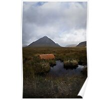 The Scottish Highlands No.8 - Abandoned Poster