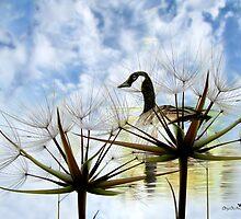 Goose Poem by Olga