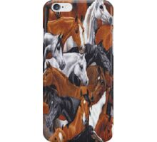 Band Of Horses iPhone 4 & 4s Case iPhone Case/Skin