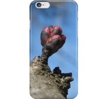 Be My Bud iPhone Case iPhone Case/Skin