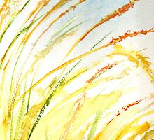 Fountain Grass by Sally Griffin