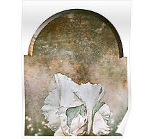 Iris Triptych 2 Poster