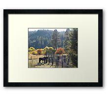 Autumn Gathering Framed Print