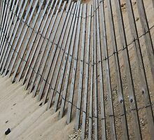 Dune Lines by RVogler