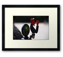 Whimsey Framed Print