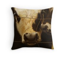 Texas Cattle Throw Pillow