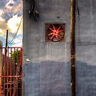 Red Fan by njordphoto