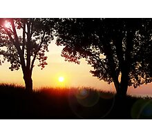 A Flare For Silhouettes Photographic Print