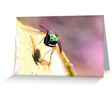 Green bee and his shadow Greeting Card