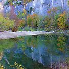 Autumn on Steel Creek,  Buffalo National River by NatureGreeting Cards ccwri