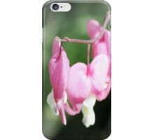 red bleeding hearts, soft background 2 iPhone Case/Skin