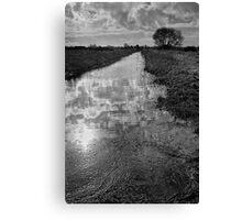Withney Dyke 01 - Near Inskip, Fylde, Lancs Canvas Print