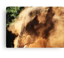 Dust Bath Canvas Print