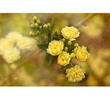 Bouquet de Fleurs Photographic Print