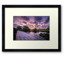 Silky Steps Framed Print